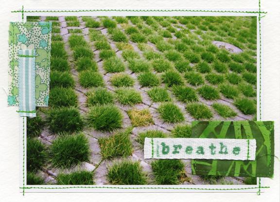 Grass Squared.JPG