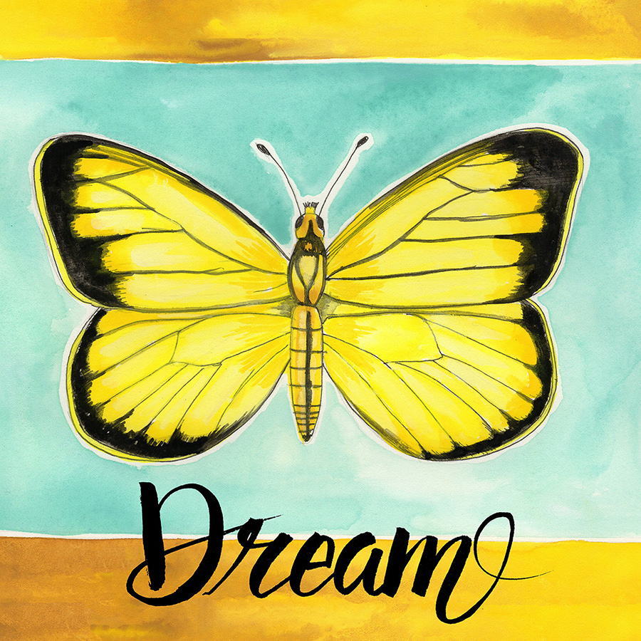 AmyFrazer-Butterfly-Dream.jpg