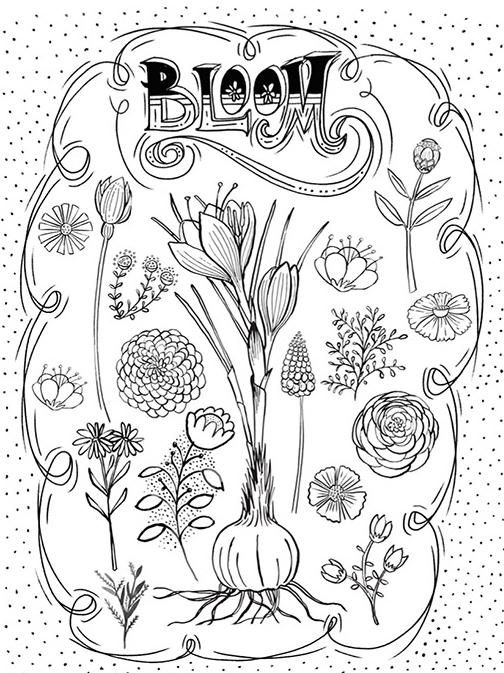 81 BlueprintPrints-AmyFrazer.jpg