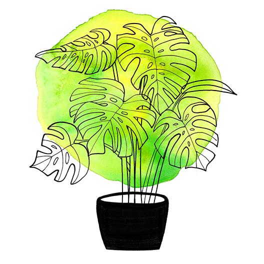 Botanical Home- Split Leaf1FLAT2.jpg
