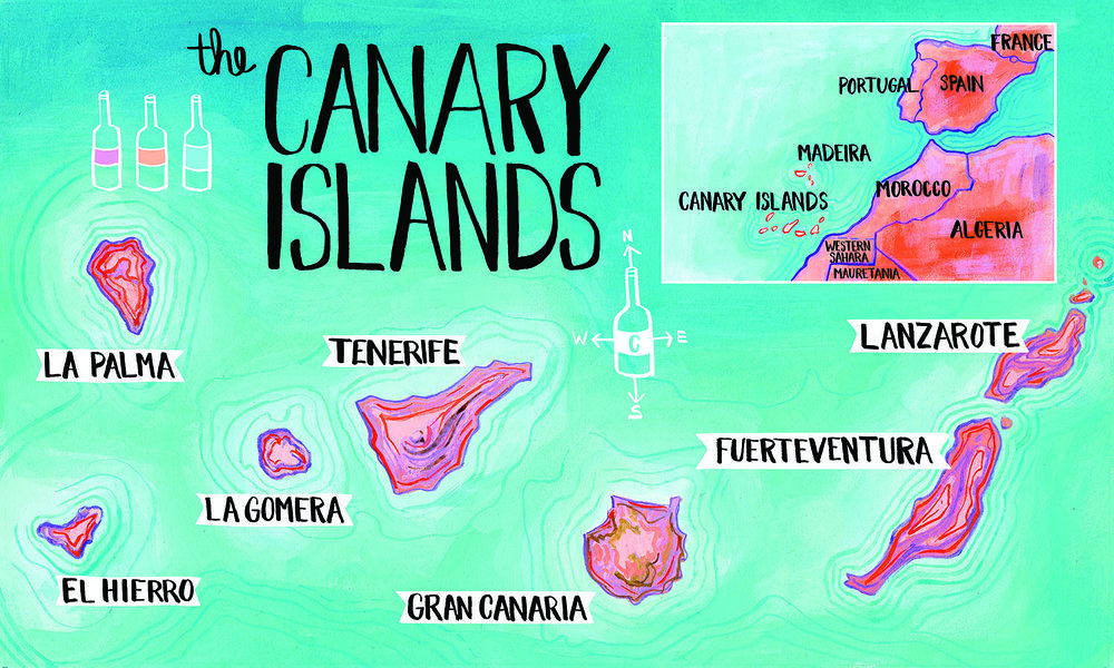 Canary Island map for Pipette Magazine