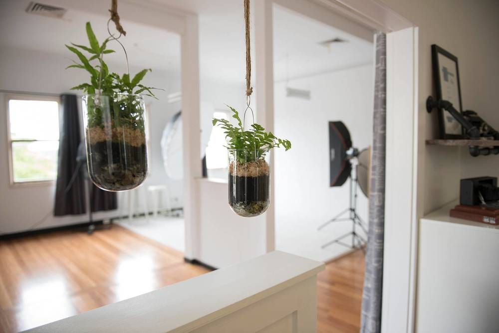Our hanging gardens