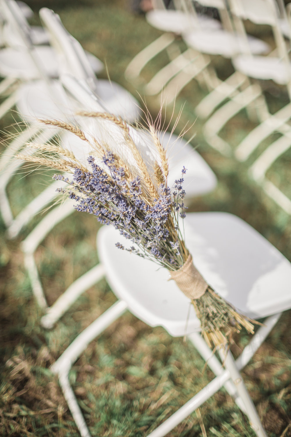 lavender wedding photography colorado