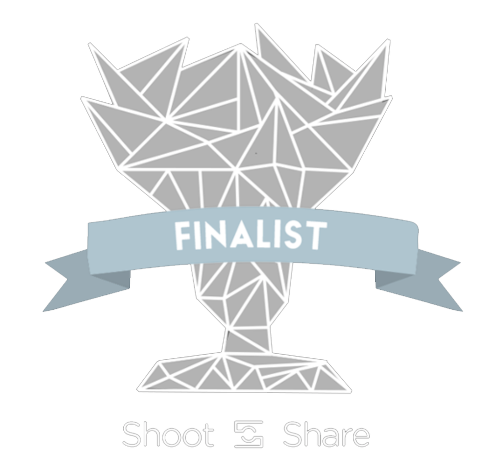 finalist.png