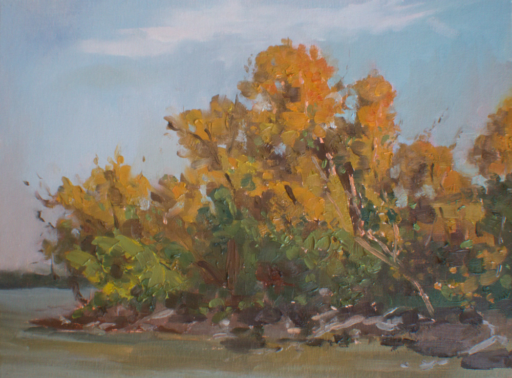 Early Autumn Danube
