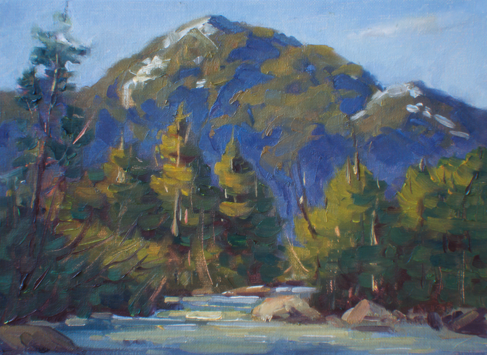 Lynn Canyon Study