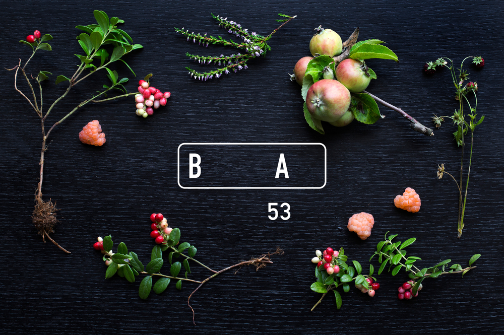 BA53 Visuelt.jpg