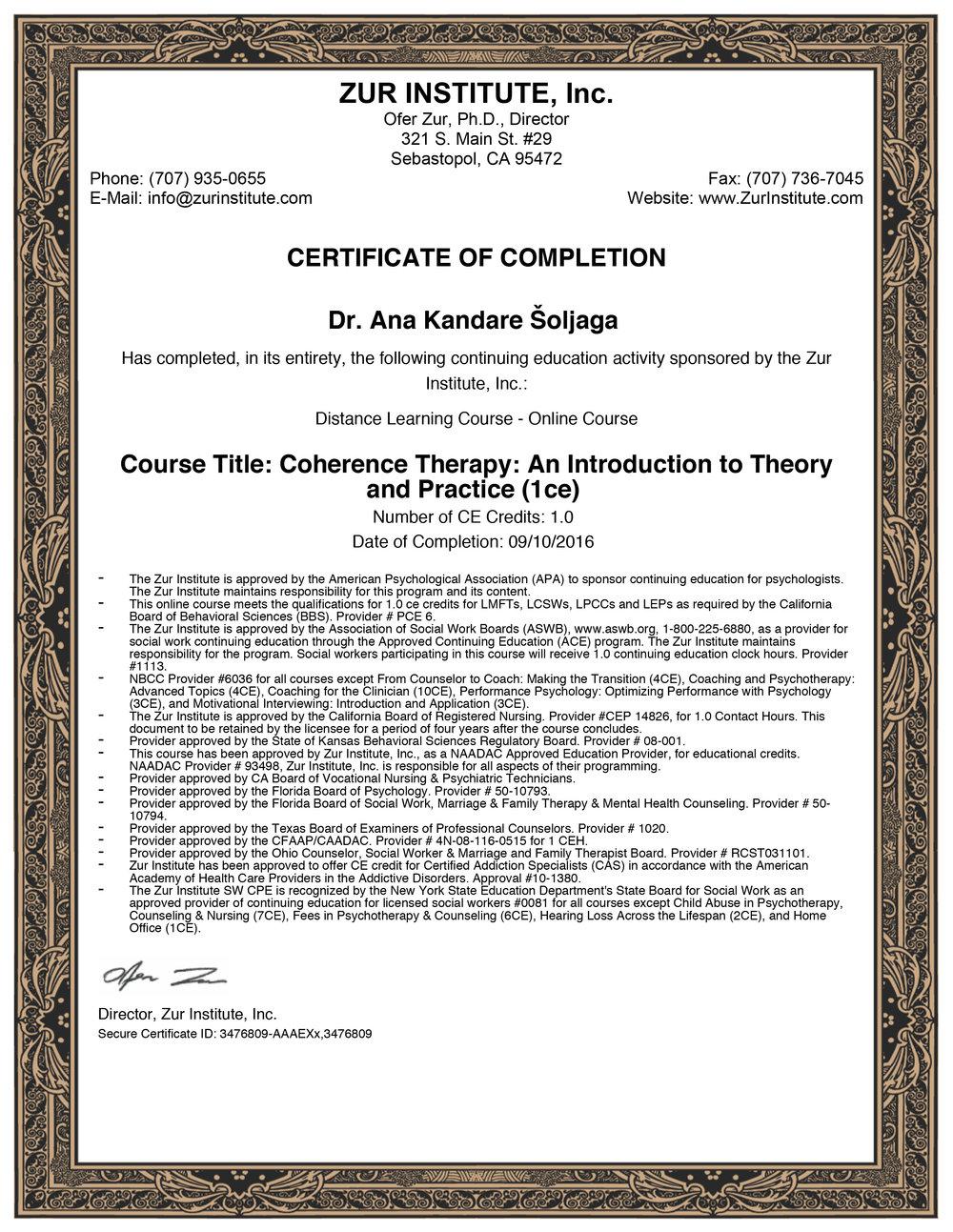 Koherentna terapija – teorija i praksa