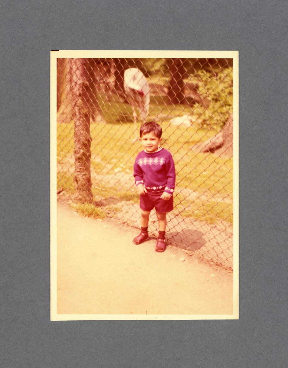 Dudley Zoo c.1975