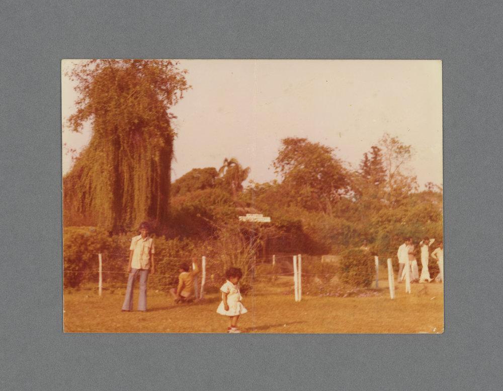 Pinjore Gardens, Haryana, India c.1976