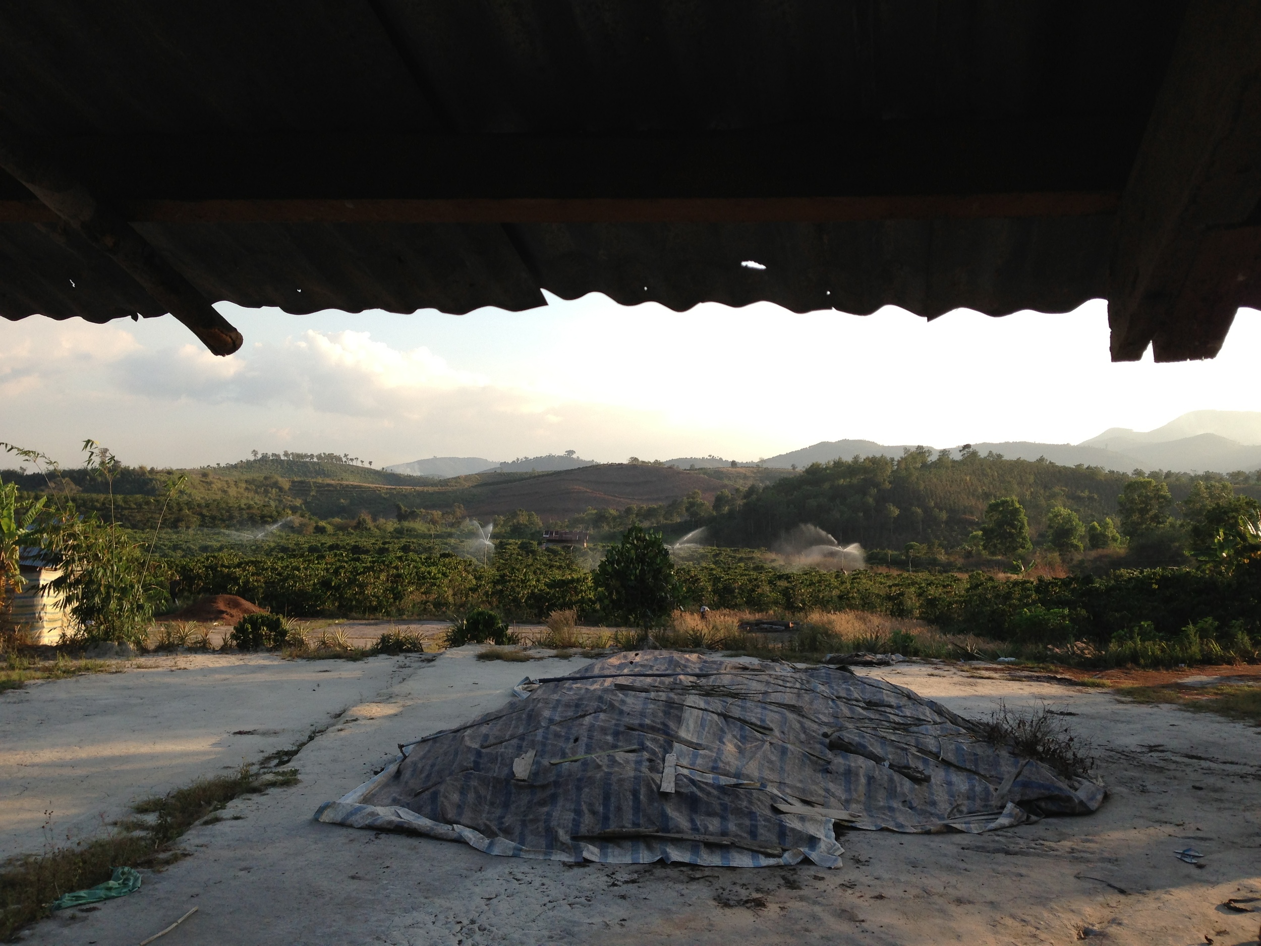 The view from Chu's farmhouse porch. (foreground: tarps on organic fertilizer)