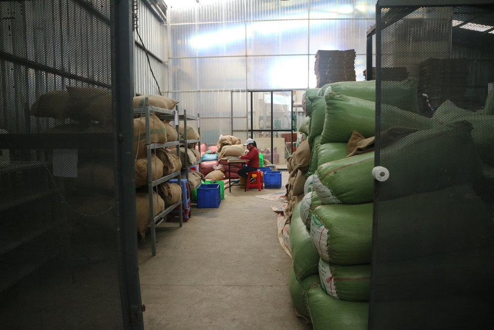 Sorting and grading a small order (center), incoming and outgoing product (bags, right and left), with dry milling behind the sliding door.