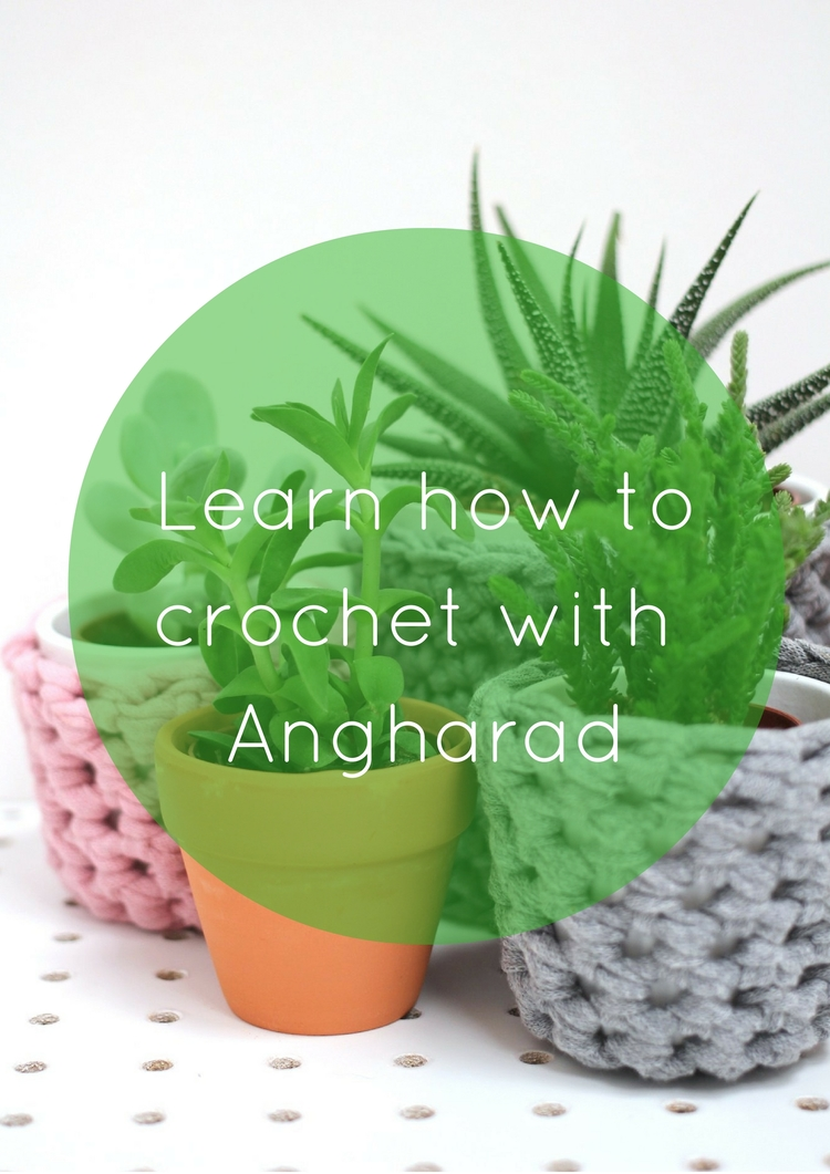 Learn+how+to+crochet+a+simple+plant+pot+coverq+(13).jpg