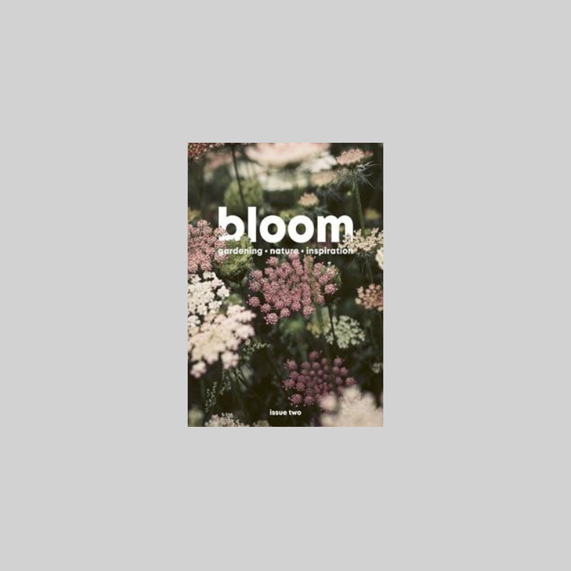 3. Bloom Magazine - A super beautiful indie magazine for the green-fingered Mumma.This lush little magazine is full of lovely imagery and inspiration for budding plant lovers through to more seasoned gardeners.The perfect pairing with a big bouquet!Bloom Magazine £8