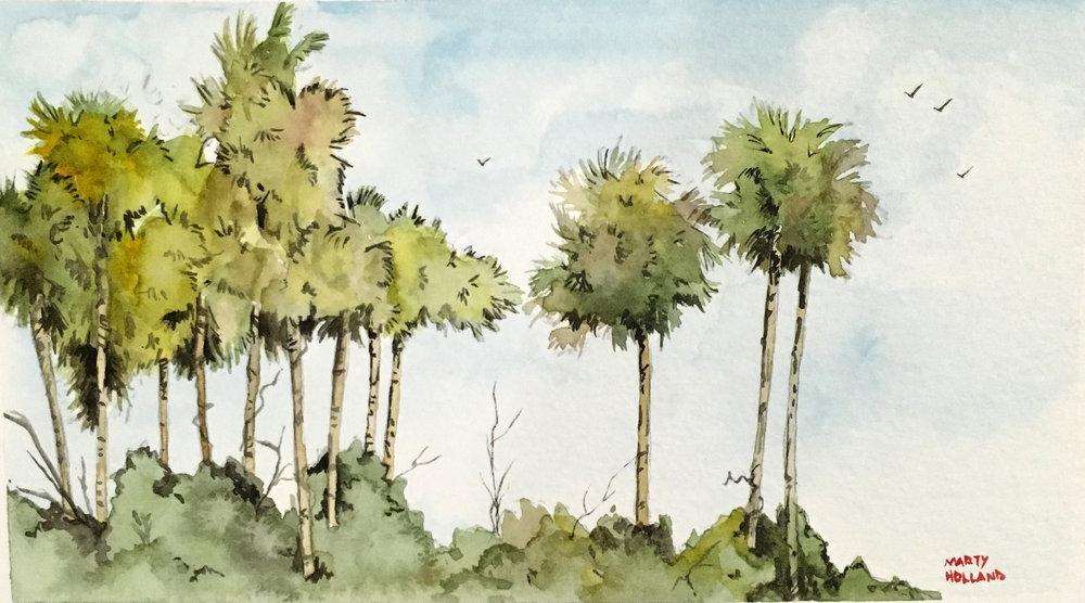 palm stand.jpg