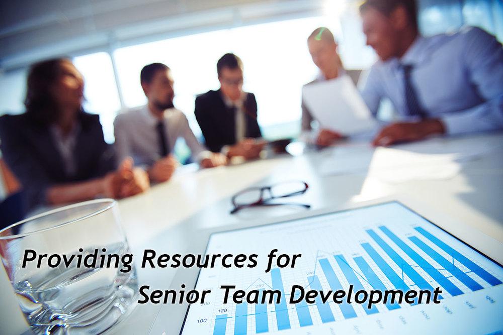 senior-team-development-w.jpg