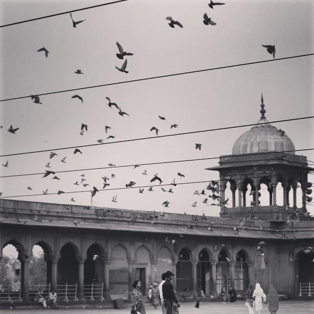Photo taken at the Jama Masjid mosque, New Delhi 2010