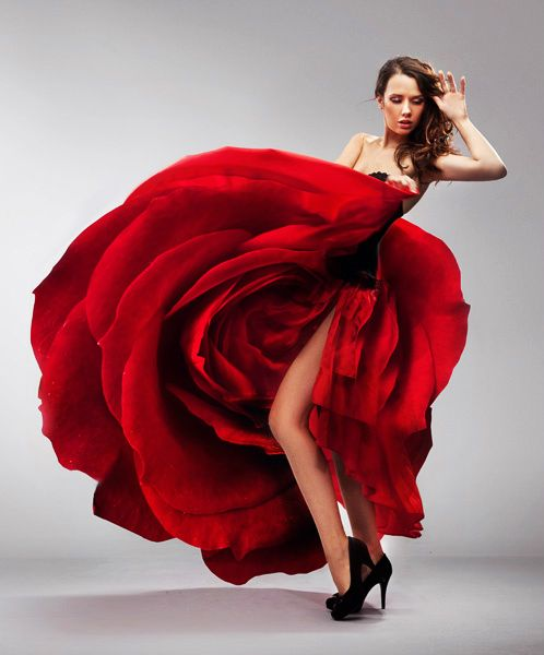 8bb46902f39b266eea83af3f2c776dd6--rose-dress-dress-red.jpg