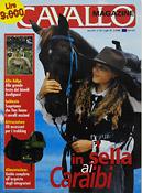 Seehauser_Magazine27.jpg