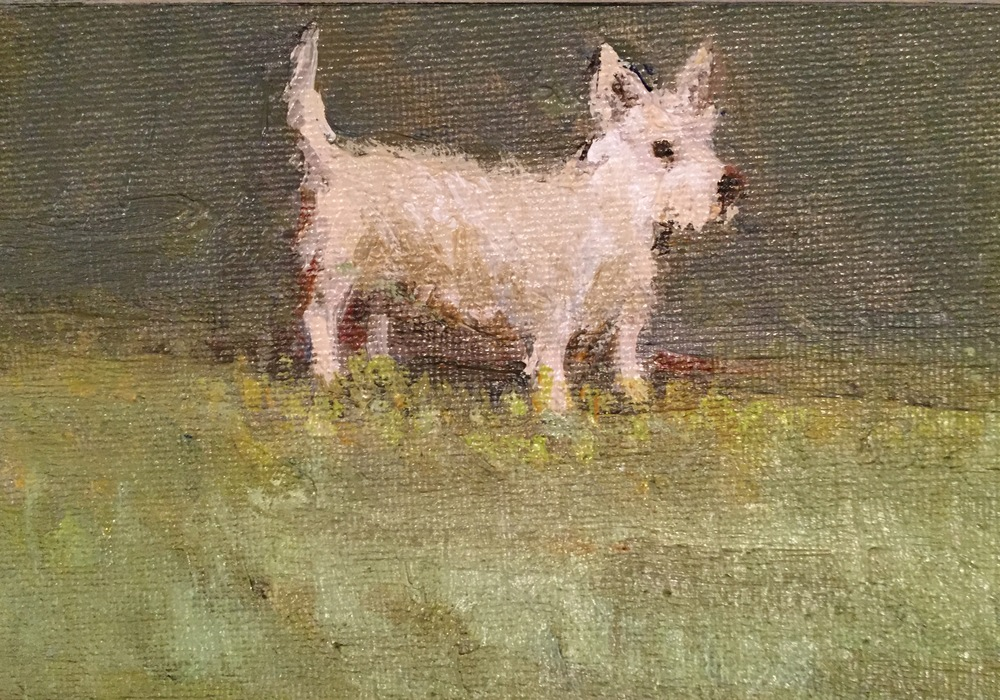 Tiny Terrier detail