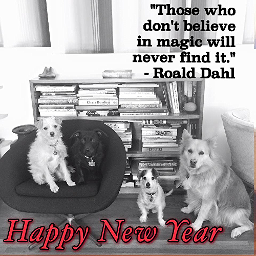 Donut, Greta, Fred, + Lucie wishing you a healthy + creative + fun + beautiful 2016.