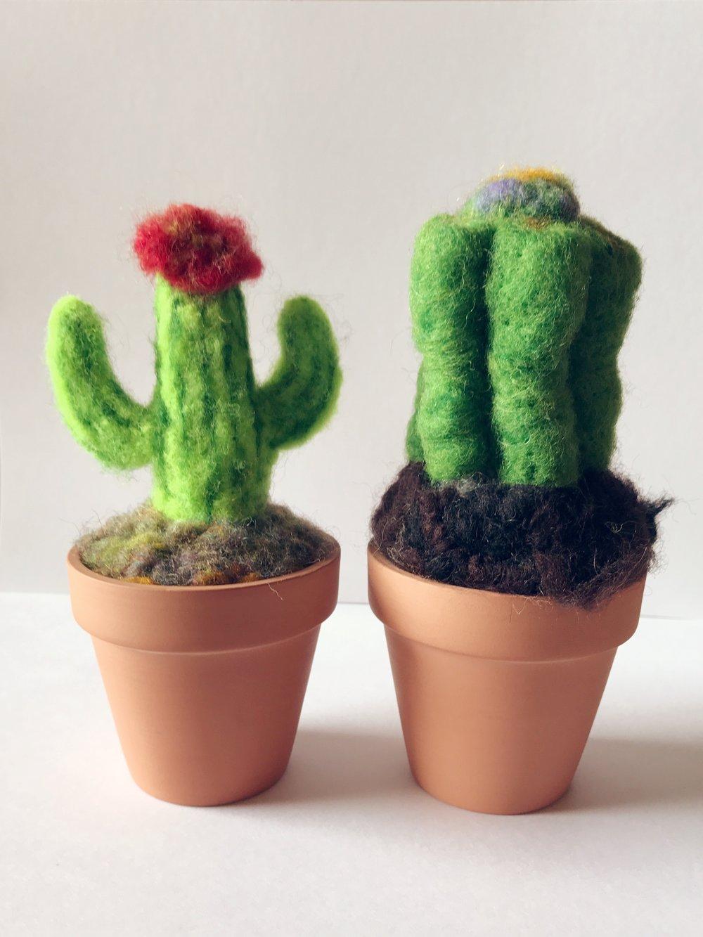 Cecilia Ho, Cactus Wool Sculpture