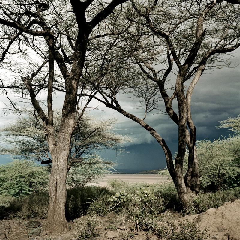 Loita Hills, Kenya, 2006