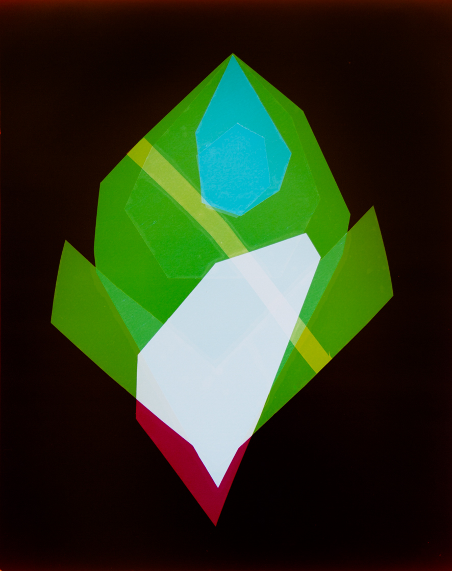Night Flower, 2015