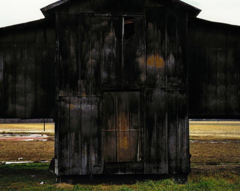 Black Barn, 2009