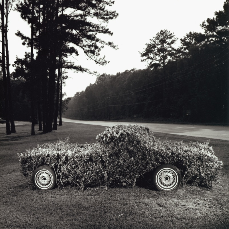 Shrub Car, 2000