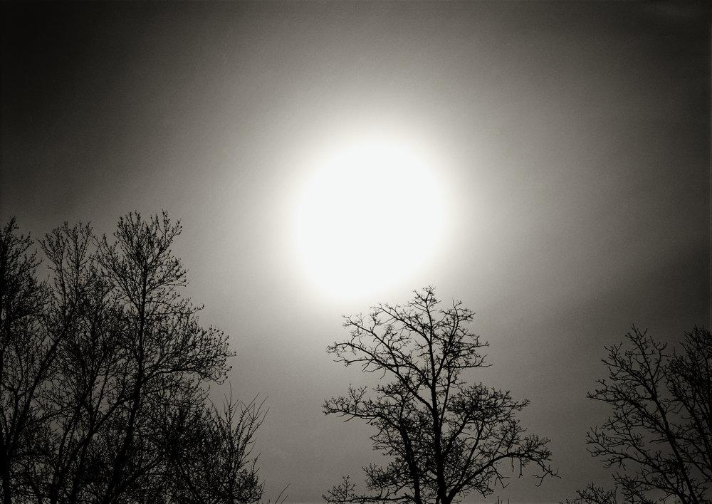 Moonlight, 2009