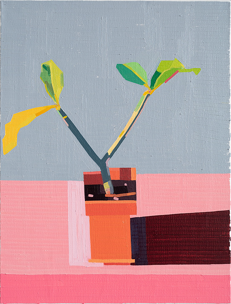 Guy Yanai,  Roof Terrace Plant , 2019  Copyright © Guy Yanai, Courtesy of SOCO Gallery