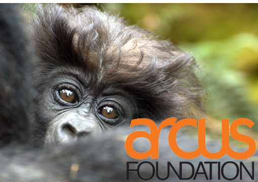 Arcus Foundation.jpg