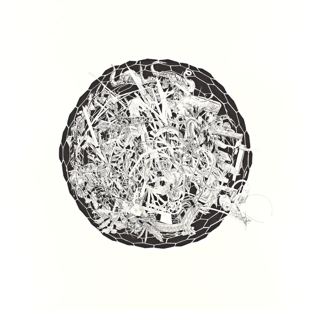 Bettina Krieg | P 91 Untitled | Ink on Paper | 150 x 150 cm | 2012