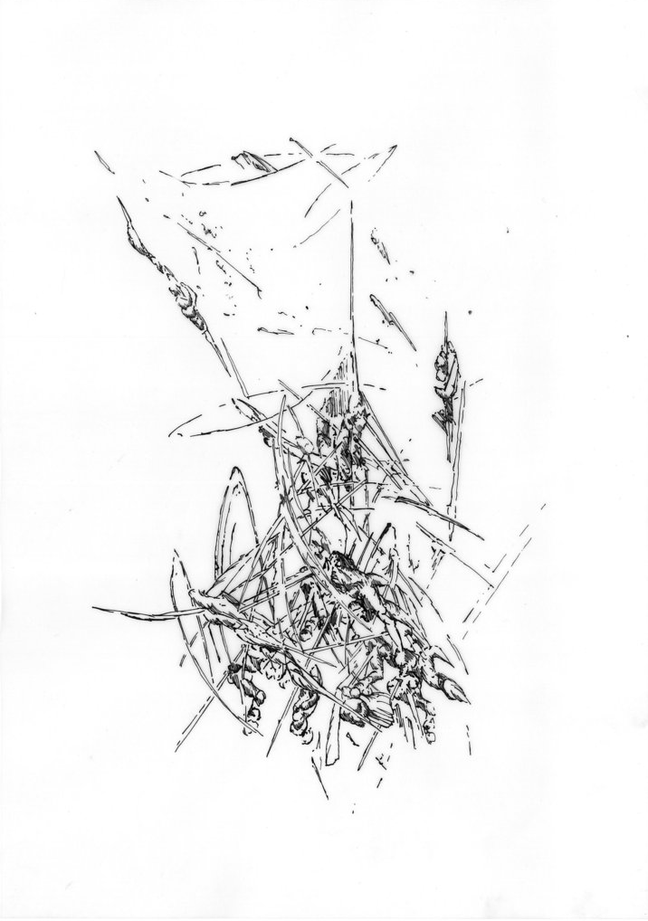 Bettina Krieg | P 114 Untitled | Ink on Transparent Paper | 29 x 21 cm | Framed | 2012