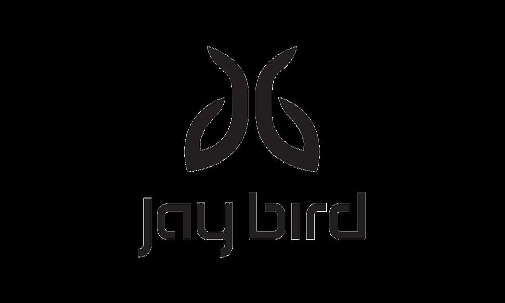 Jay Bird.png