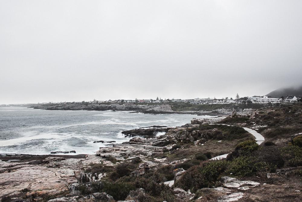 MalteGoy_Southafrica-0572.jpg