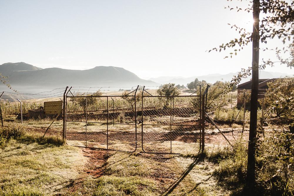 MalteGoy_Southafrica-1134.jpg