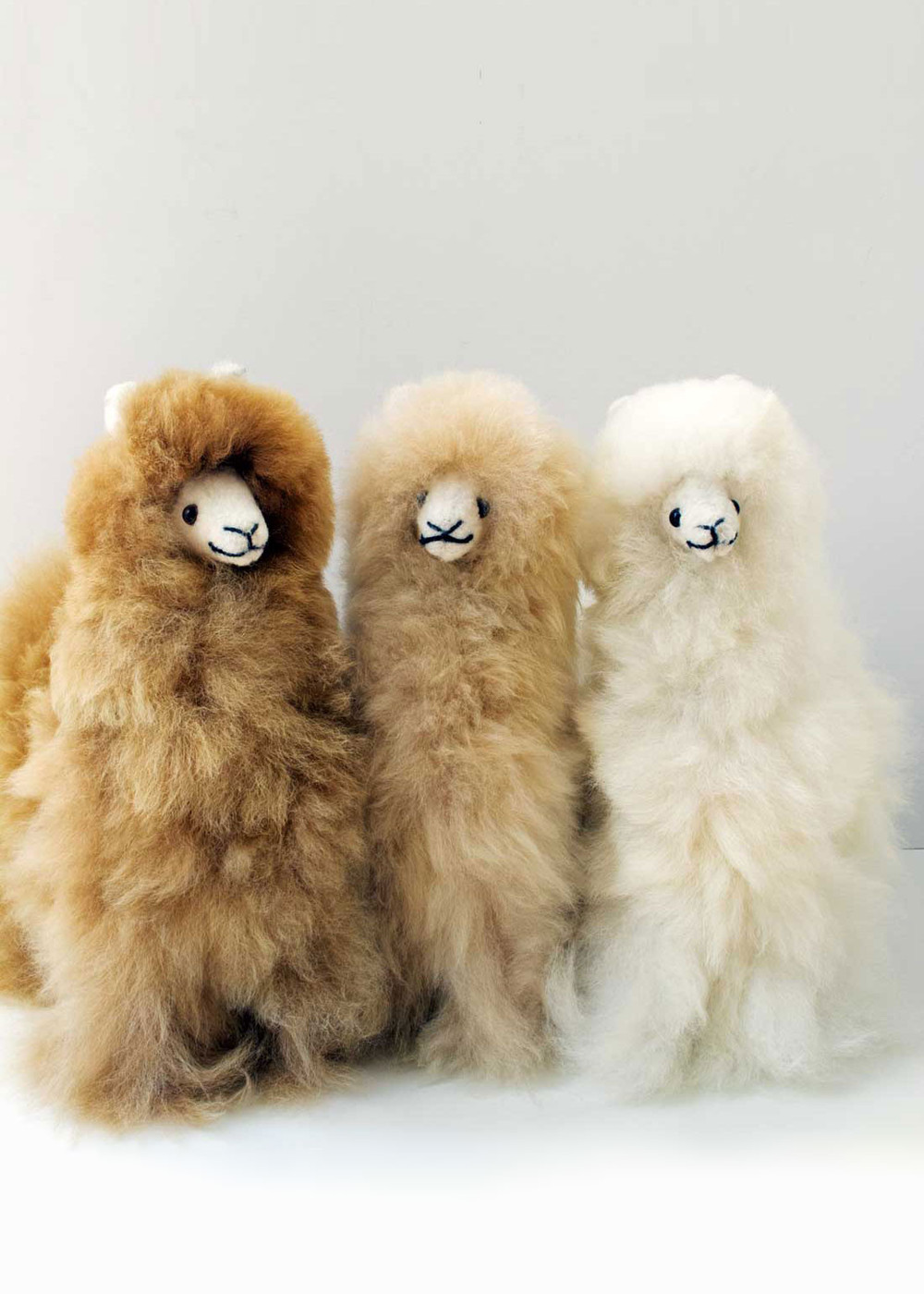 Daniel Alpaca Stuffed Animal