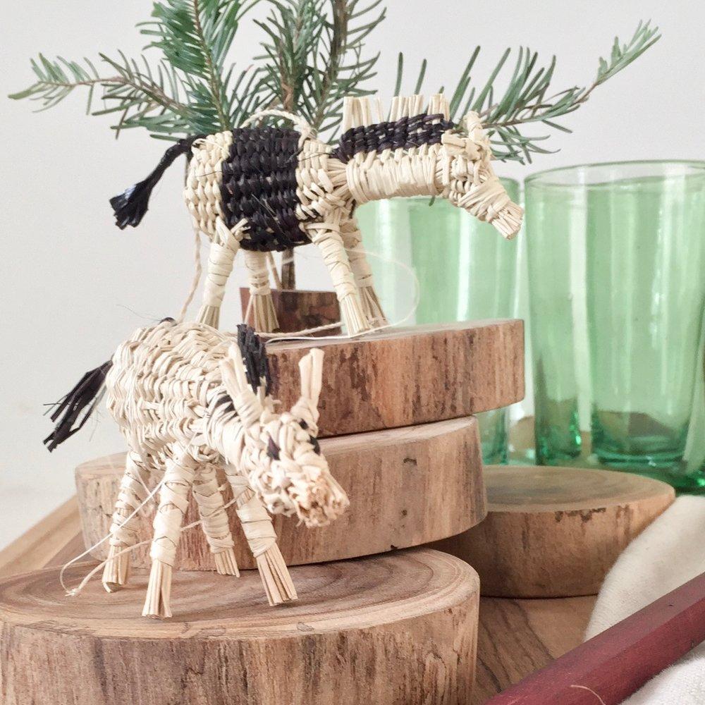 Acorn palm horses