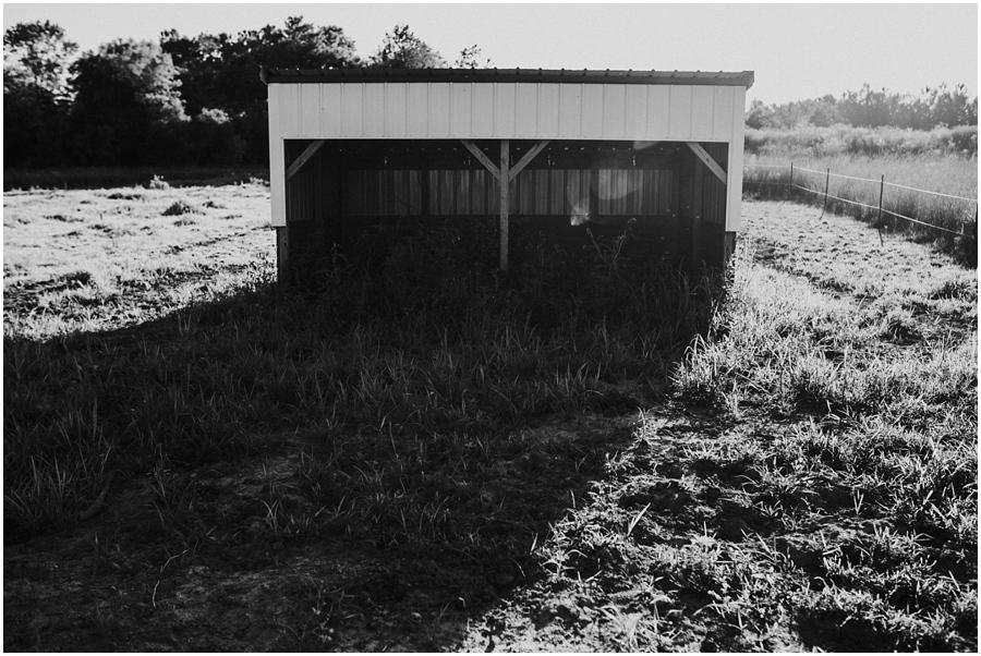 WisconsinFamilyPhotographer18.jpg