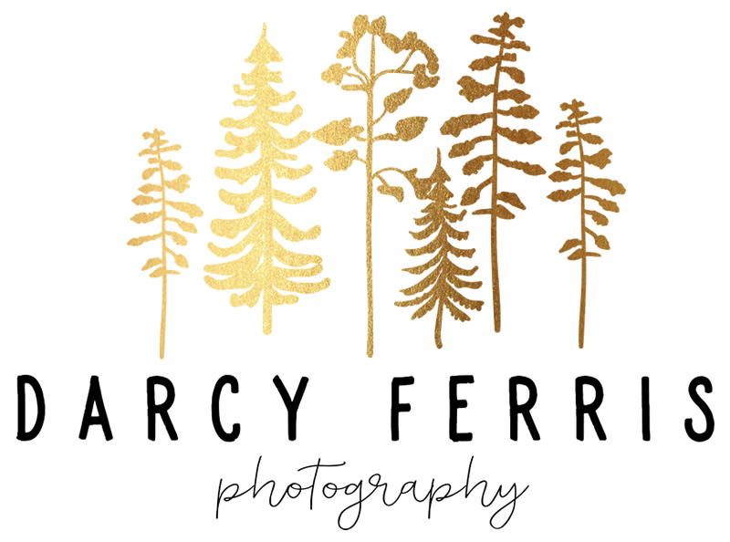 Darcy Ferris Photography