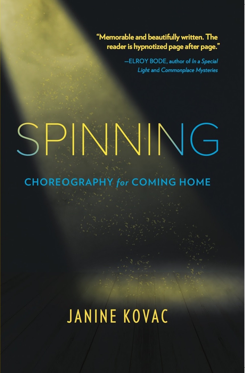spinning book cover.jpg