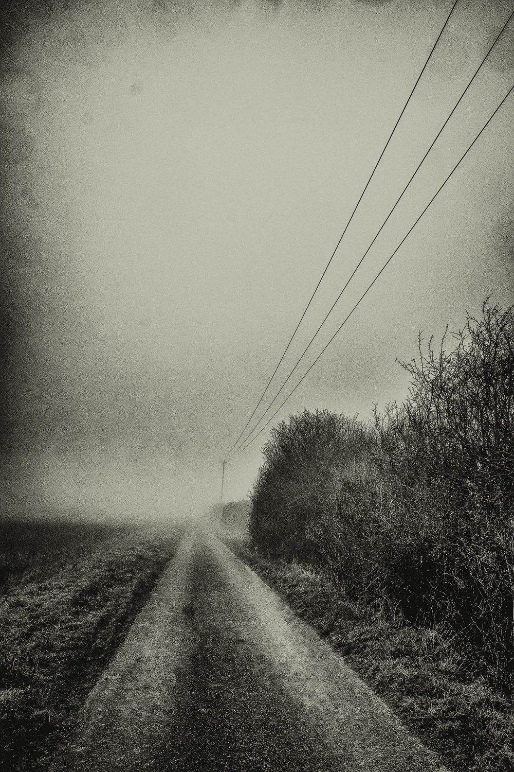 Wires in the mist
