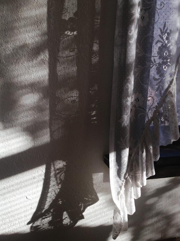 twopaperhorses :     Morning Light | Idaho