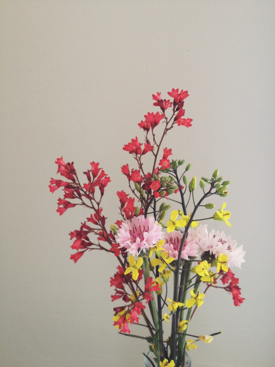 Freshly painted walls and flowers from the yard. The yellow ones are kale.