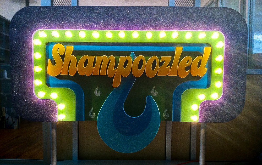 Shampoozled