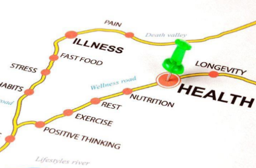 Healthy Aging: Choosing The Road To Wellness — Nutritional ...