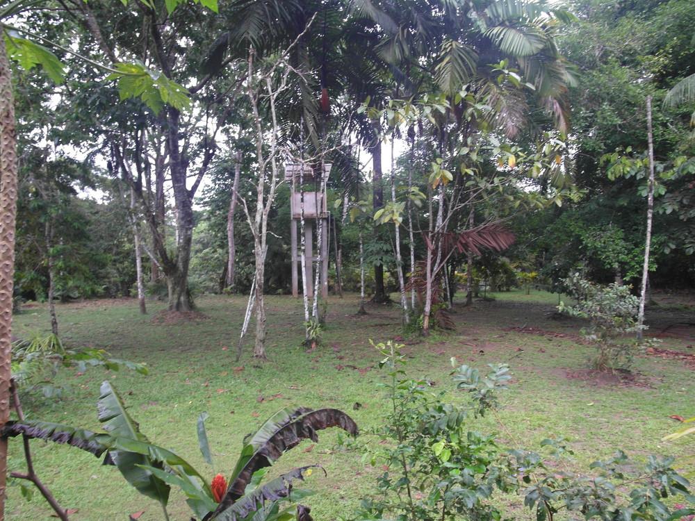 PeruColombiaI (47 of 287).jpg