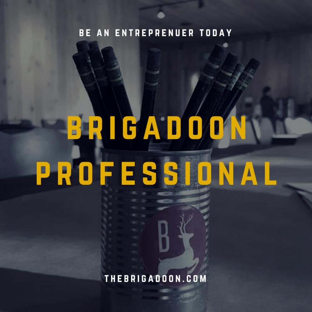 Brigadoon Professional 3.png